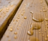 Пропитка Древесины - важный аспект ее применения в строительстве